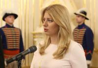 Slovensko ide do volieb v ústavnej kríze