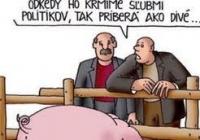 Ústavní činitelia porušujú Ústavu SR.