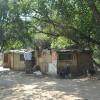 Predčasným umieraním úbytok Rómov úradom vyhovuje!