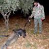 Vojna v Sýrii = vojna médií.