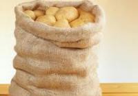 Vrece zemiakov by bol dobrý kandidát, myslia si v SDKÚ, KDH a MOSTe