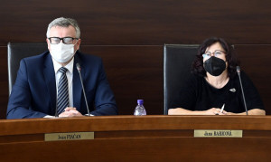 Ústavný súdo referende