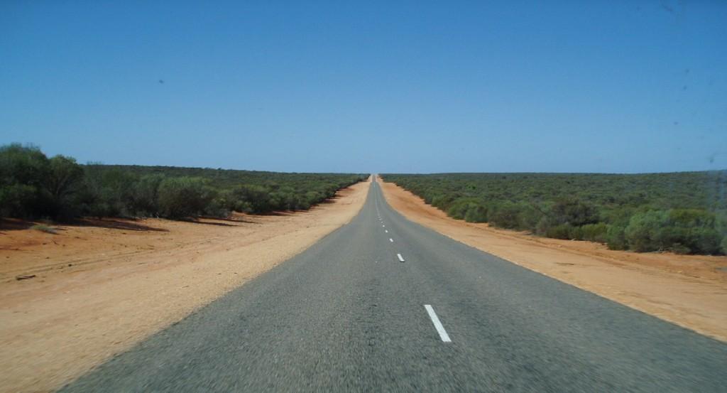 Cesta v šírej buši