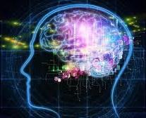 Kognitivne vnimanie