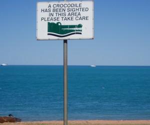 Pozor krokodíl!
